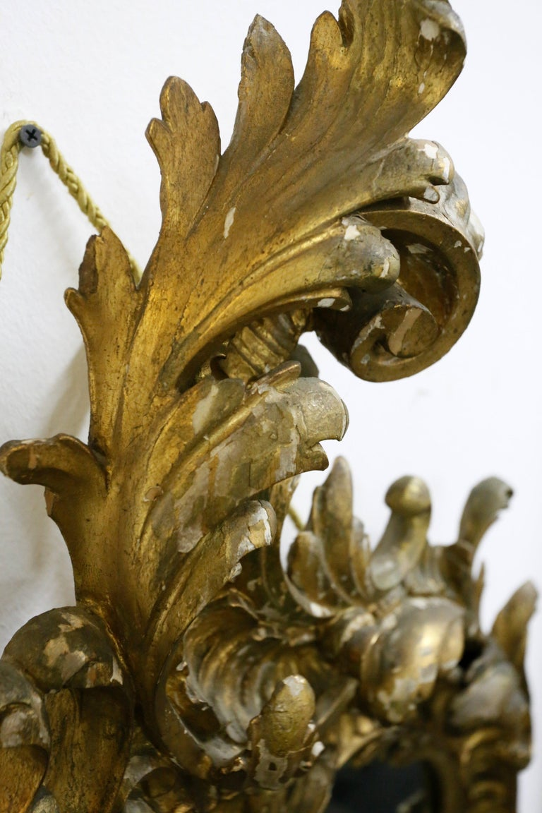 European Gold-Plated Hand Carved Wood Mirror, Rococo Style, 19th Century For Sale
