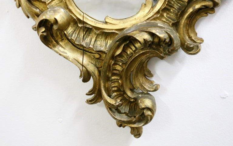 Gold-Plated Hand Carved Wood Mirror, Rococo Style, 19th Century For Sale 2