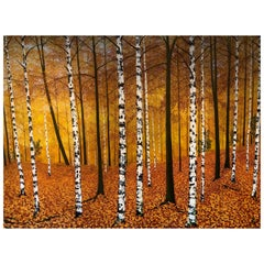 """Golden Birches"" Contemporary Oil Painting by David Williams"