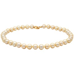 Golden Color South Sea Cultured Pearl Necklace