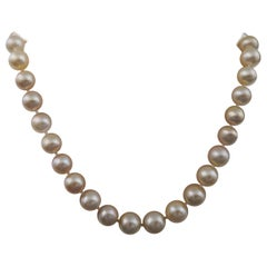 Golden Color South Sea Pearls Round Shape