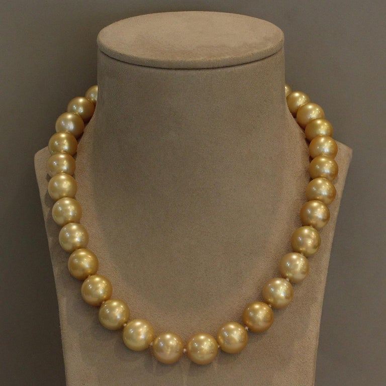 A distinguished classic single strand necklace made of the esteemed golden South Sea pearls. The 14 mm lustrous, perfectly round pearls are expertly matched for a necklace that is blemish free. A matching 18K yellow gold sphere adheres to the