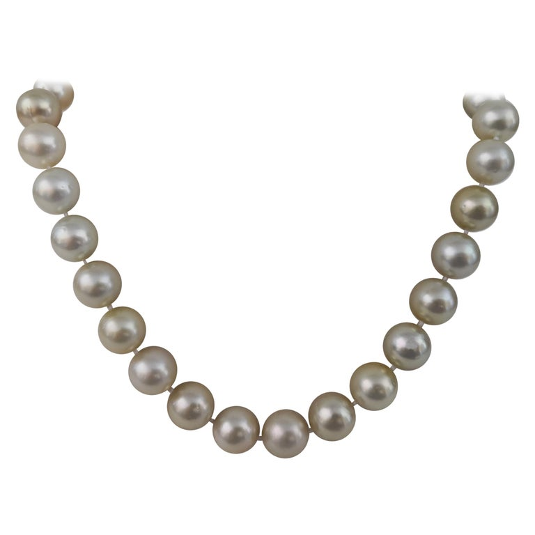 Golden South Sea Pearl Round Shape For Sale
