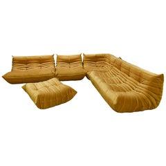 Golden Velvet Togo Sofa Set by Michel Ducaroy for Ligne Roset, 1970s, Set of 5