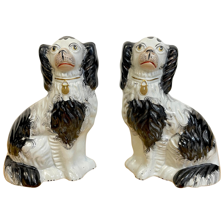Good Pair of 19th C Staffordshire Black & White Spaniels