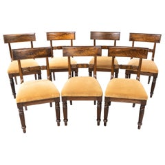 Good Set '6+1' of William iv Mahogany Framed Chairs