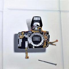"Photorealist camera painting, ""Double Exposure"", Gordon Lee, acrylic on linen"