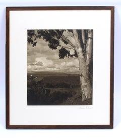Original Gordon Abbott Photograph Silver Gelatin Print Framed Museum