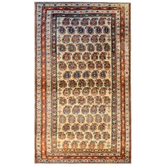 Gorgeous Early 20th Century Bidjar Rug