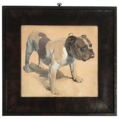Gouache Drawing of a Bulldog, American in Original Frame, circa 1890-1900