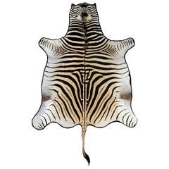 Grade A Zebra Rug