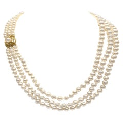 Graduating Akoya Pearls with a 14k Yellow Clasp