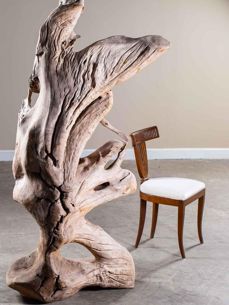 Grand Scale Organic Modern Beach Driftwood Floor Lamp
