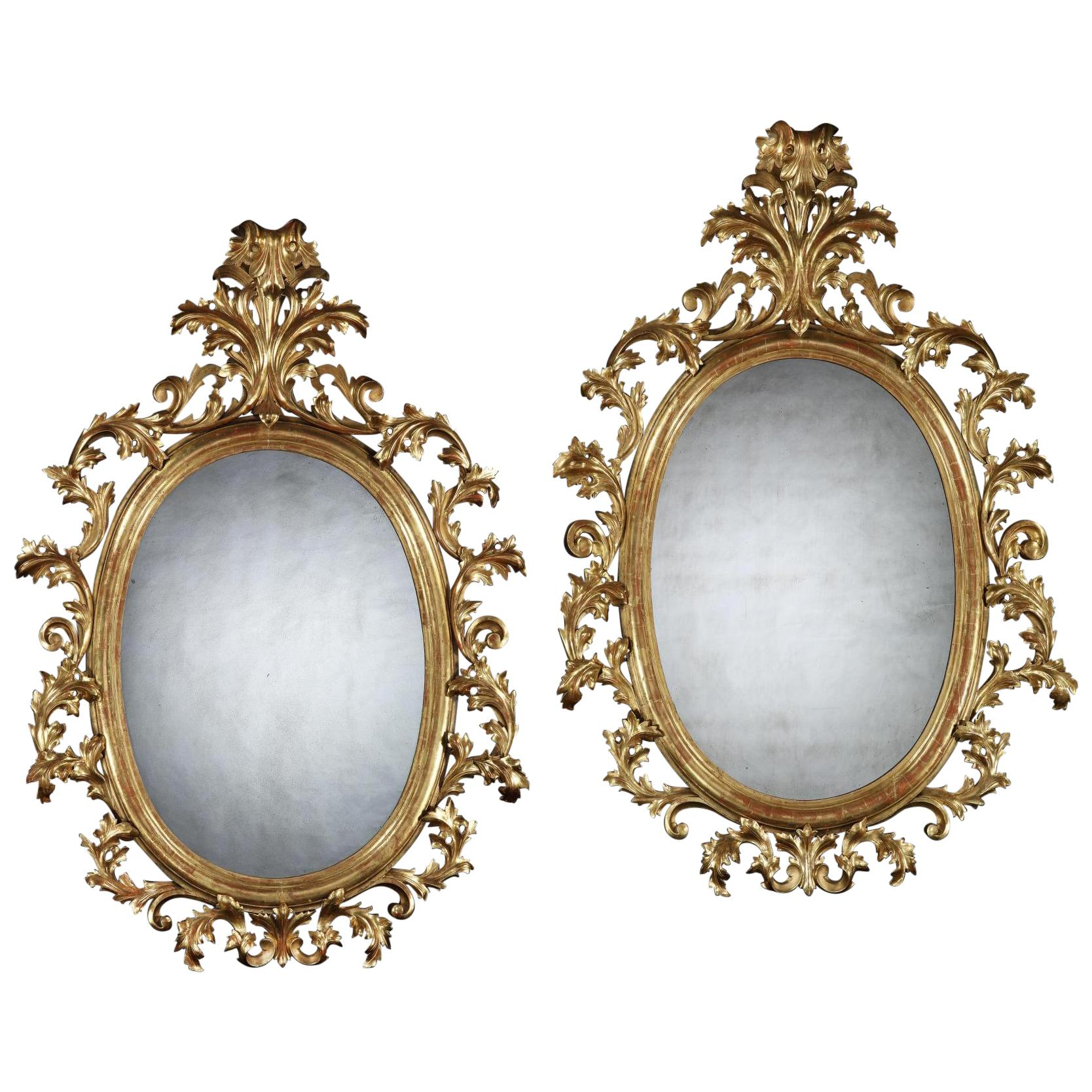 Grand Scale Pair of 19th Century Oval Florentine Carved Giltwood Mirrors