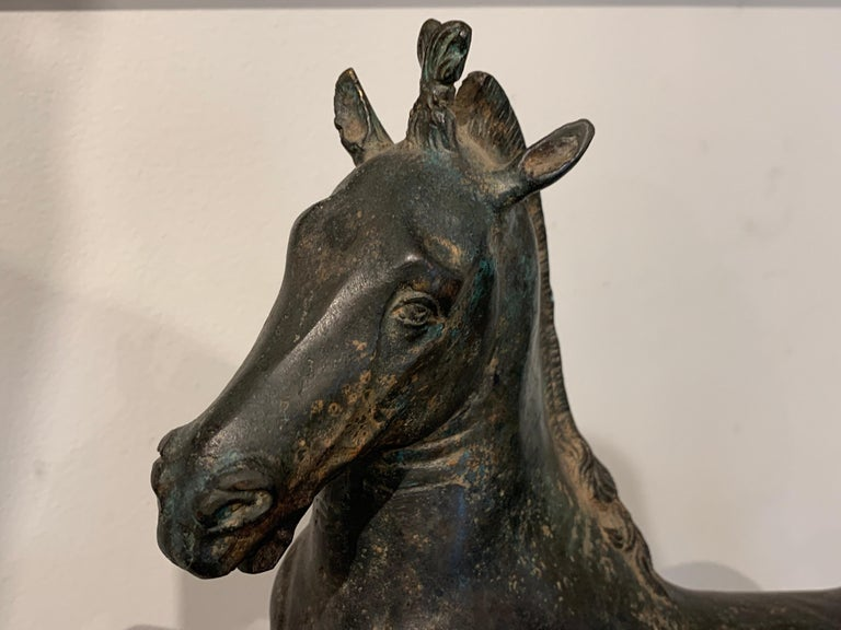 Grand Tour Bronze Sculpture of a Rearing Horse For Sale 7