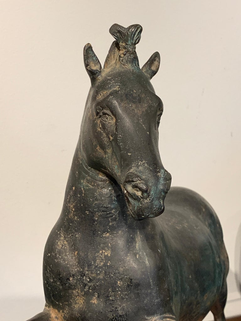 Grand Tour Bronze Sculpture of a Rearing Horse For Sale 4