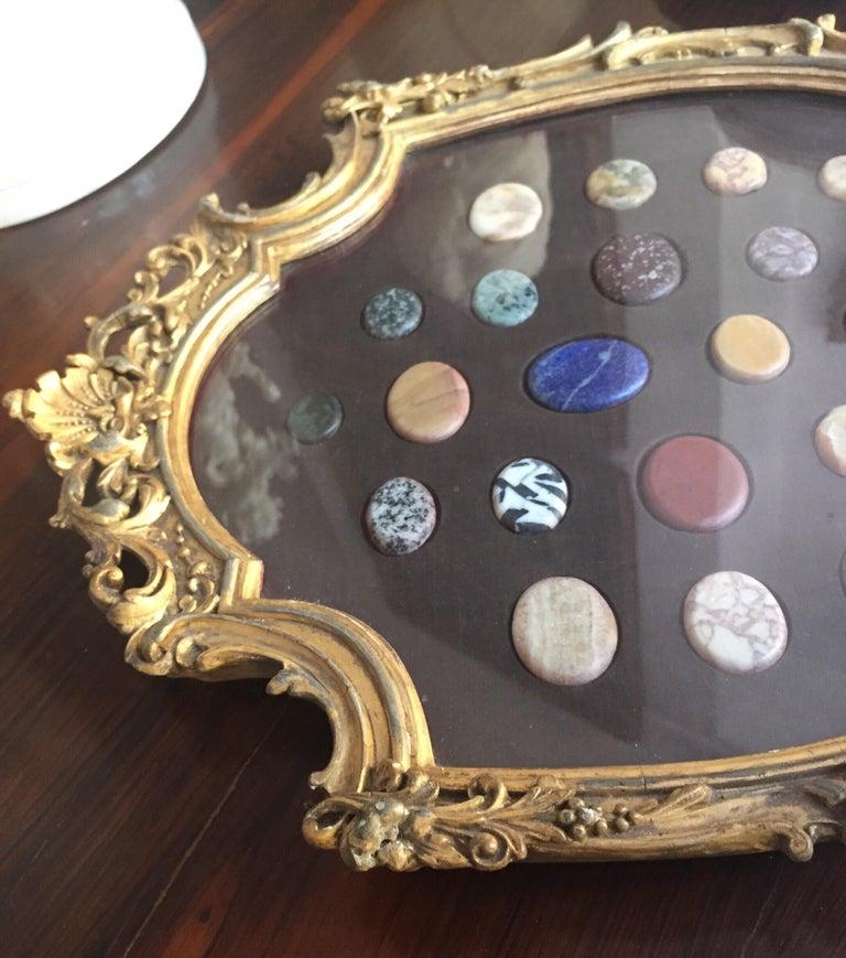 Grand Tour Italian Marble Specimen Pietra Dura Gilt Framed Panel, 19th Century For Sale 2