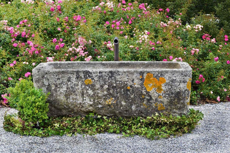 This small granite trough has a nice patina and a curved line. The shape is not perfectly straight but this makes it even more special. The trough has a nice size and it looks perfect in a garden full of flowers.