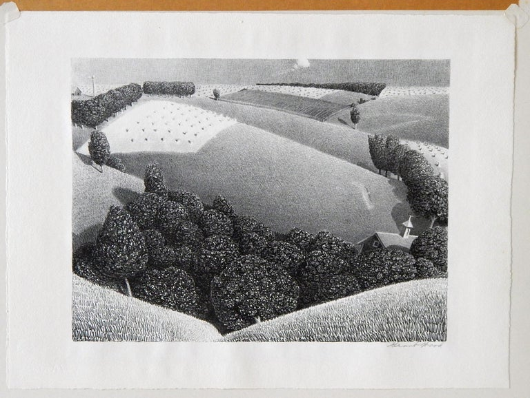 Grant wood original stone lithograph in excellent condition. 9