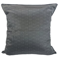 Gray and Black Dior Logo Silk Scarf and New Black Cotton Back Decorative Pillow