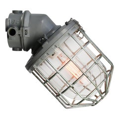 Gray Cast Aluminum Vintage Industrial Clear Glass Wall Lamp