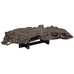 Gray Toned Bleached Organic Form Lyche Wood Coffee Table