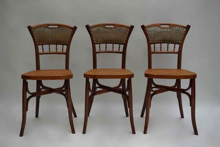 Belgian Great Set of 40 Art Nouveau Chairs, circa 1900 For Sale
