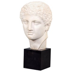 Grecian Style Plaster Bust on Marble Base