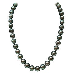 Green Tahitian South Sea Pearl Necklace