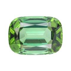 Green Tourmaline Ring Gem 10.64 Carat Rectangular Cushion Loose Gemstone