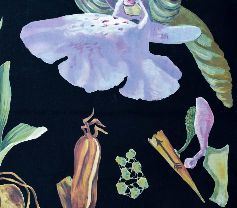 Green-Winged Orchid, Rare Vintage Botanical Wall Chart, Jung-Quentell-Koch In Good Condition For Sale In St. Margarethen, AT