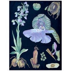 Green-Winged Orchid, Rare Vintage Botanical Wall Chart, Jung-Quentell-Koch