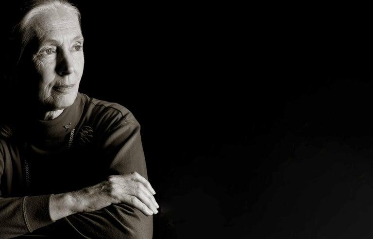 Greg Gorman Black and White Photograph - Jane Goodall, Contemporary, Celebrity, Photography, Portrait