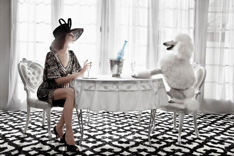 Greg Lotus Color Photograph - Champagne Poodle