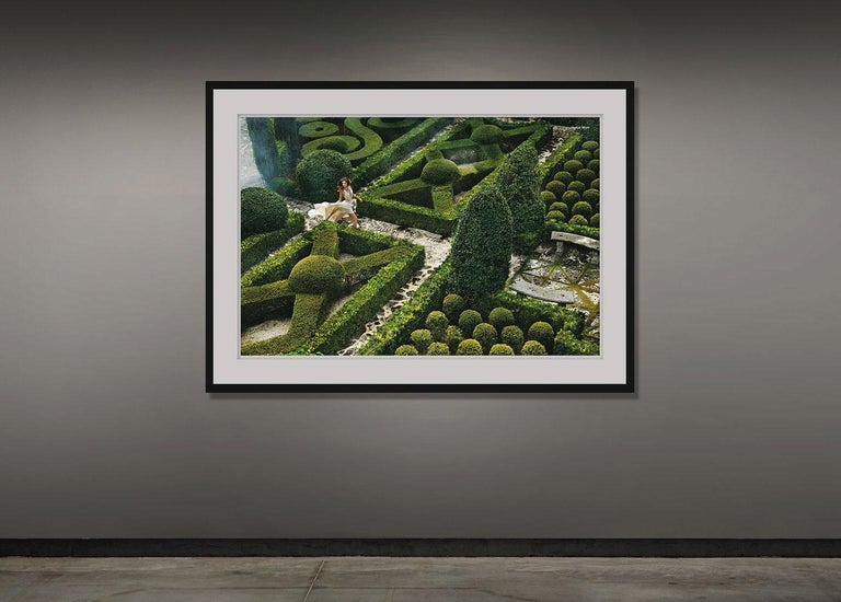Hedge Maze - Contemporary Photograph by Greg Lotus