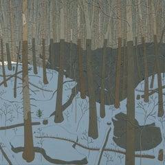Between Ledges, Wyatt Mt., Virginia Landscape, Gray Trees, Brown and Light Blue