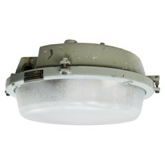 Grey Cast Aluminum Vintage Industrial Frosted Glass Wall Ceiling Lamp Scones (2x
