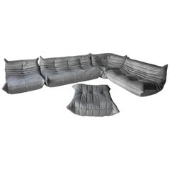 Grey Velvet Togo Sofa Set by Michel Ducaroy for Ligne Roset, Set of 5