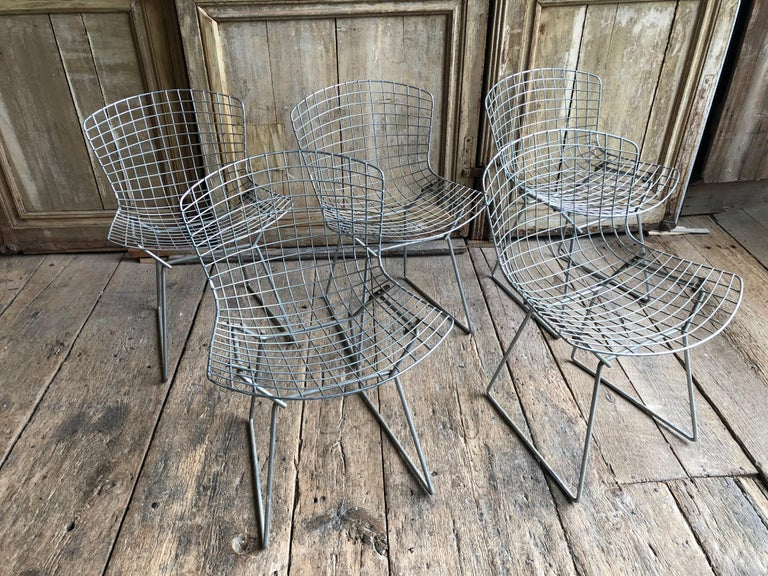 A set of 5 chromed steel side chairs by Harry Bertoia for Knoll, circa 1970.