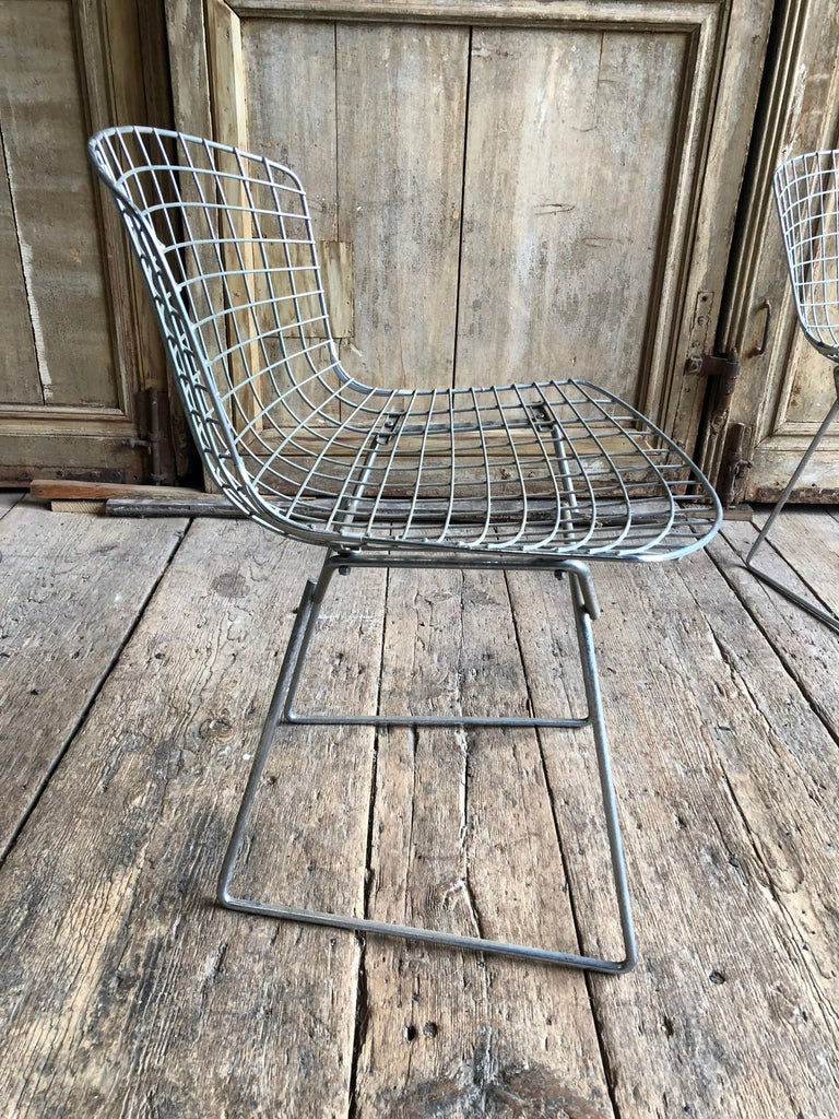 Mid-Century Modern Group of 5 Bertoia Side Chairs in Chrome For Sale
