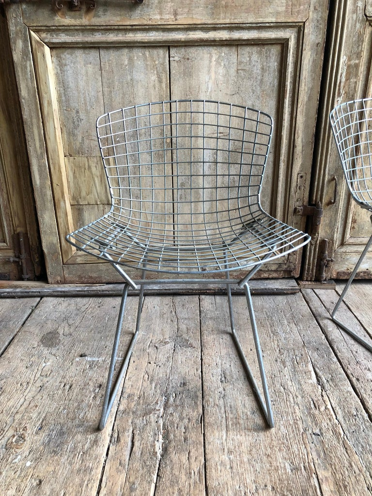 Steel Group of 5 Bertoia Side Chairs in Chrome For Sale
