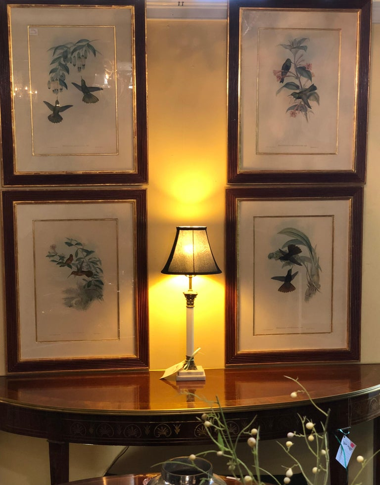 Renaissance Group of Nine John Gould 19 Century Copperplate Hand Engravings Framed & Matted For Sale