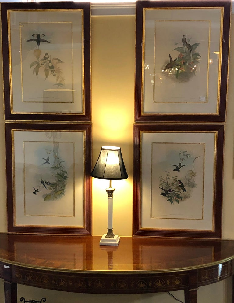 Group of Nine John Gould 19 Century Copperplate Hand Engravings Framed & Matted In Good Condition For Sale In Stamford, CT