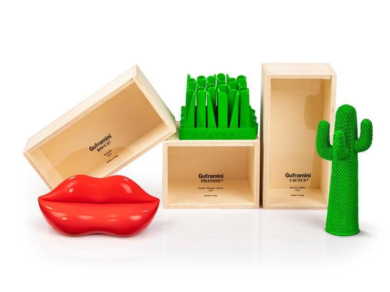 Contemporary GUFRAMINI Miniature Cactus by Drocco & Mello - 1stdibs New York For Sale