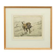 Gun Dog Etching, Henry Wilkinson