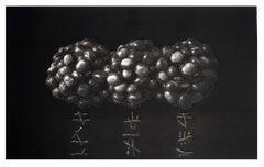 Chestnuts VII