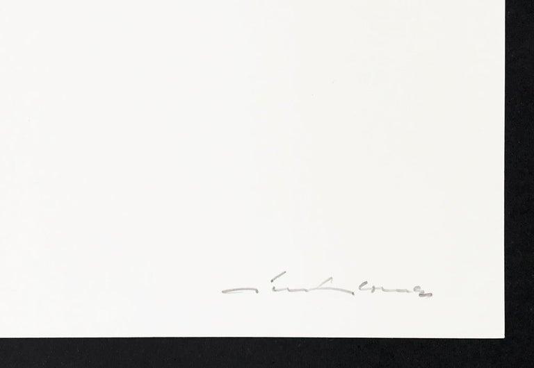 Between Green (Zwischen Grün), Screenprint, Geometric Abstract Art, 20th Century - Abstract Geometric Print by Gunter Fruhtrunk