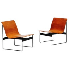 Günter Renkel Rego Lounge Chairs, Germany, 1959