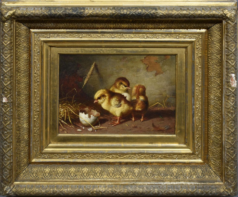 """Realist view of newly hatched chicks by Gustav Konrad Sus  (1823 - 1881).  Oil on canvas, circa 1860.  Signed.  Displayed in a period giltwood frame.  Image size, 10""""L x 10""""H."""
