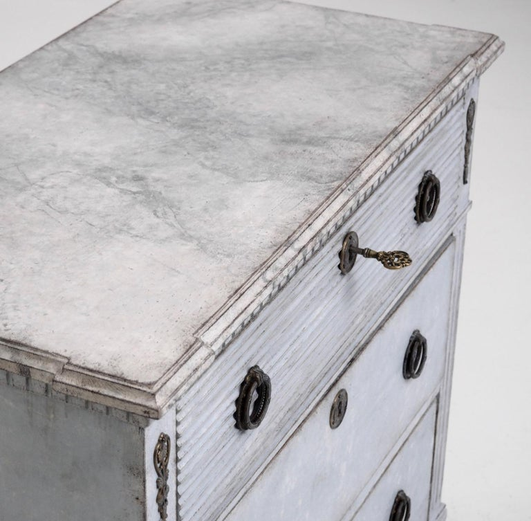 Gustavian Style Chest with Carvings, 19th Century For Sale 3